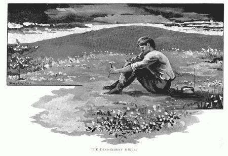 The Despondent Miner